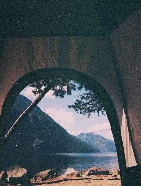 أجمل صور