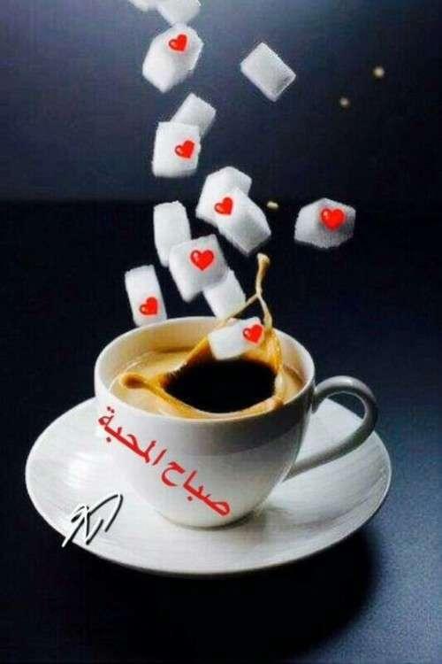 صباح المحبة
