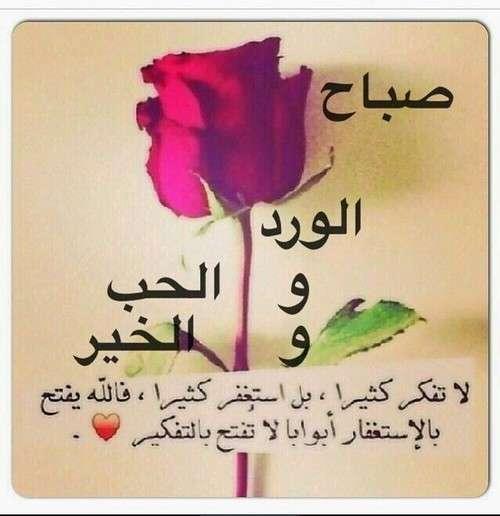 صباح الورد والحب والخير