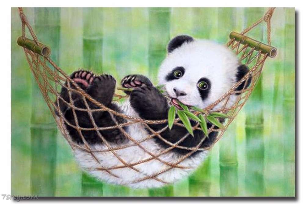 دب الباندا زعلان