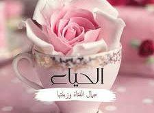 حكم عن الحياء والكسوف