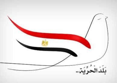 صور علم مصر (14)