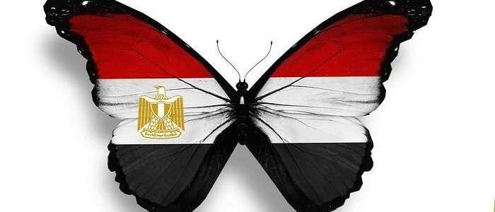 صور علم مصر (23)