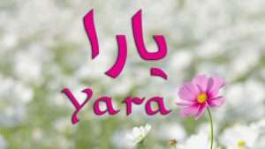صور وخلفيات مكتوب عليها اسم يارا (4)