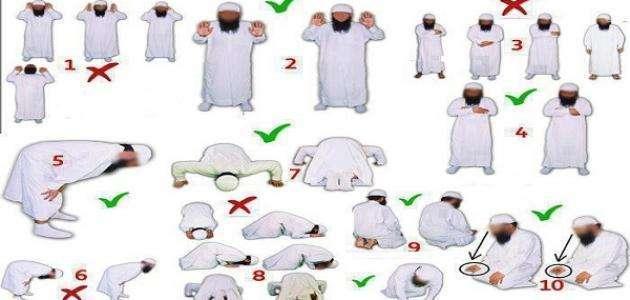 صورة كيفية الصلاة ، ما هي أركان الصلاة