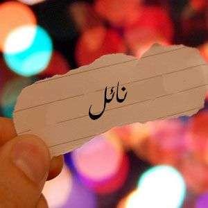 معنى اسم نائل