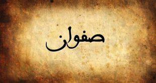 معنى اسم صفوان
