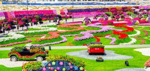 حديقة الورد في دبي موقع حصرى
