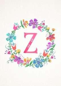 صور اسم زينة (2)