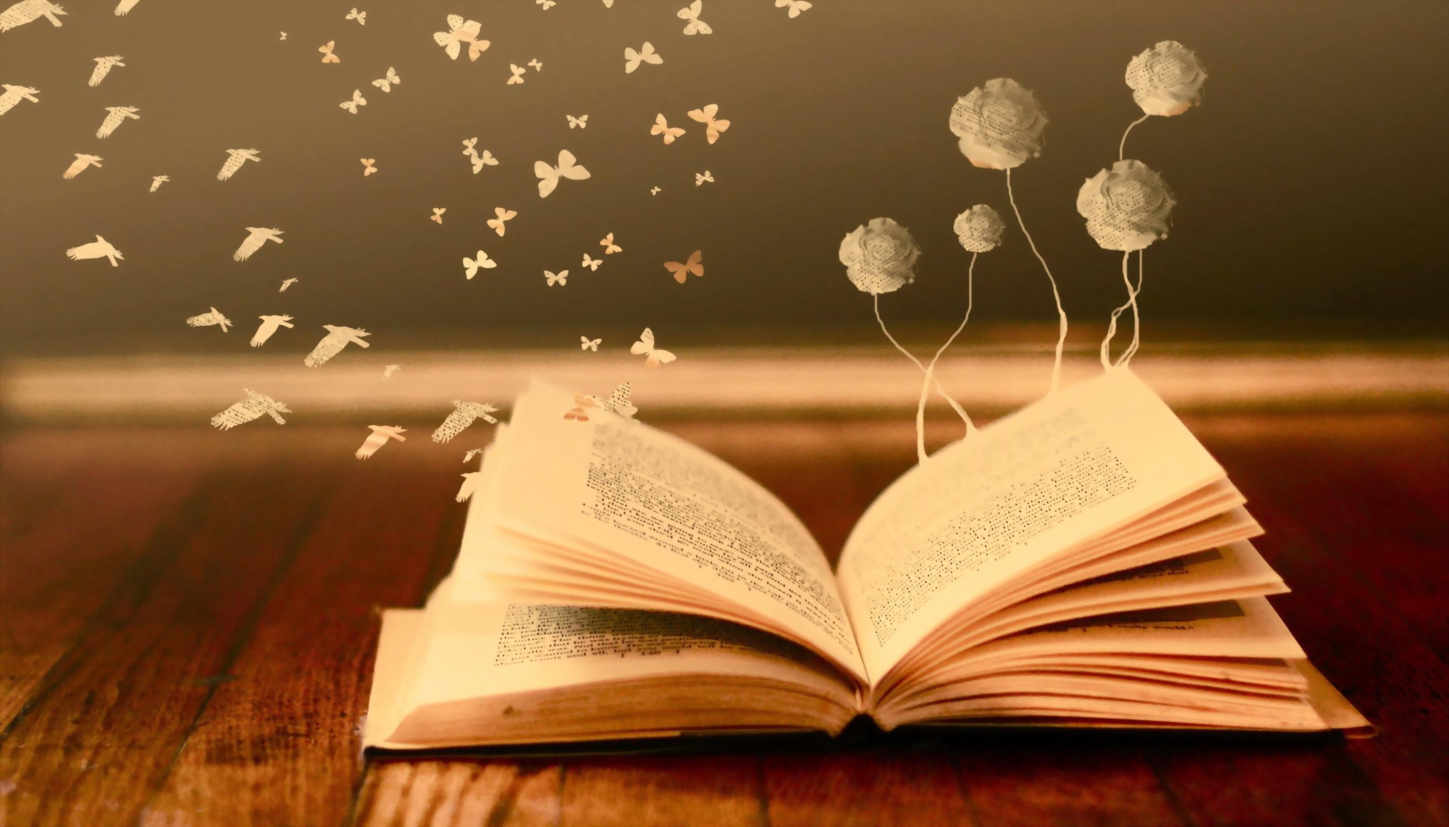 خاتمة عن القراءة
